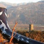 Vigne à Farinet - Valais - Suisse