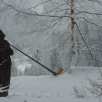 Daniel Bachmann - Black Forest