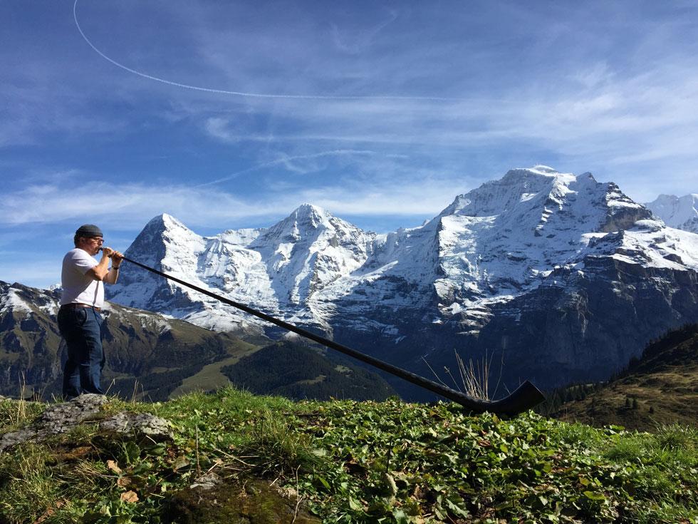 swisscarbonalphorn suisse